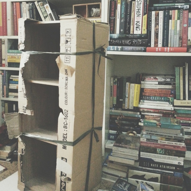 ex02 — Annotated TBR, Baby Bookshelves Edition